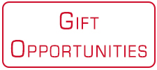 gift opportunities