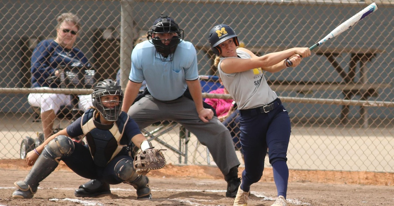 Skene's two home runs lead Wolverines to win
