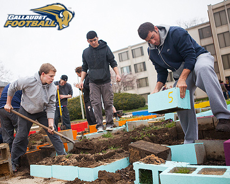 Bison football team helps with on-campus garden
