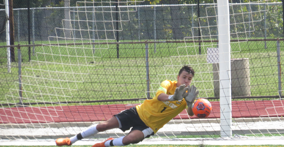 Storm Drops GLIAC Opener to Tiffin, 2-1