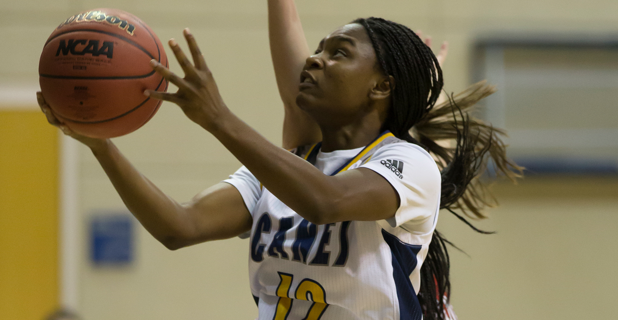 Bearcats Overpower Lady Canes