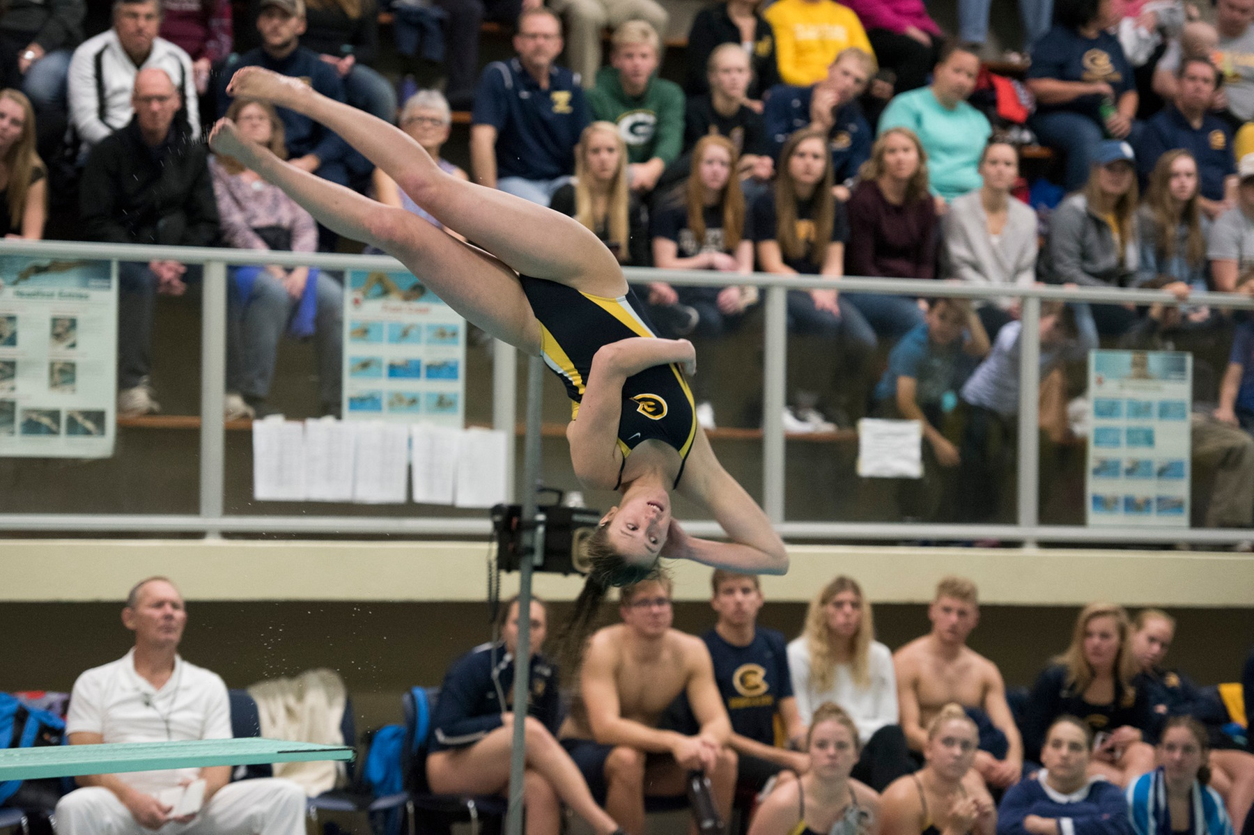 Blugold Swimming & Diving takes down Warhawks