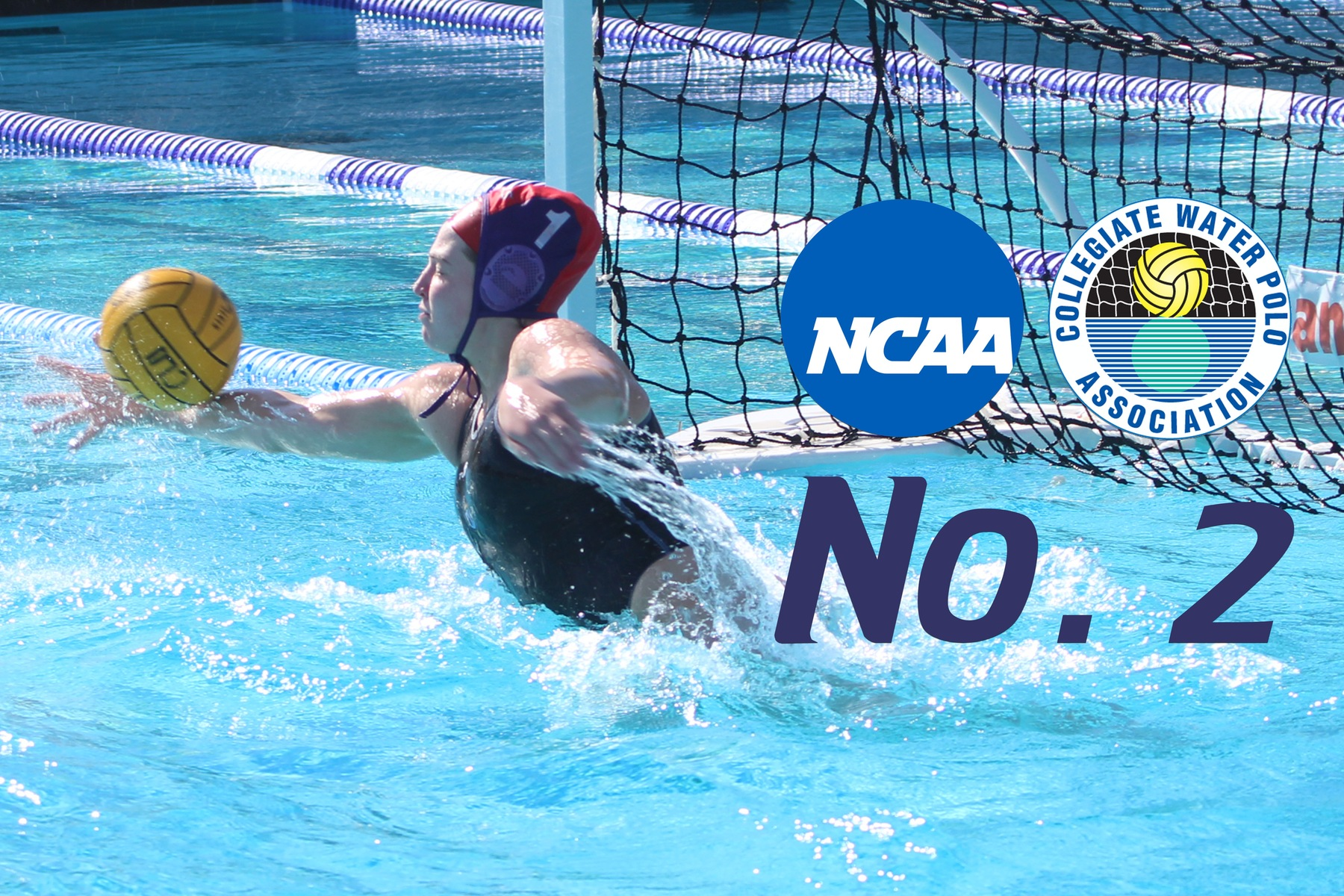 Women's Water Polo No. 2 in NCAA/CWPCA Poll