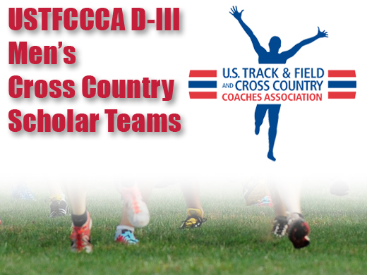 Men's cross country earns all-academic status