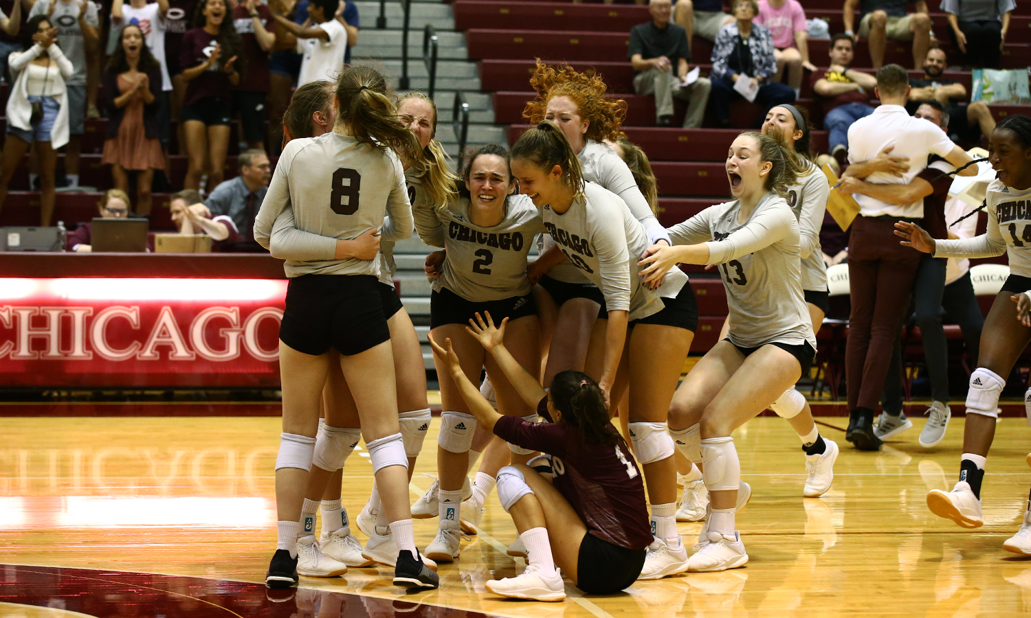 DOWN GOES #1! UChicago Volleyball Tops Top-Ranked Calvin, 3-1
