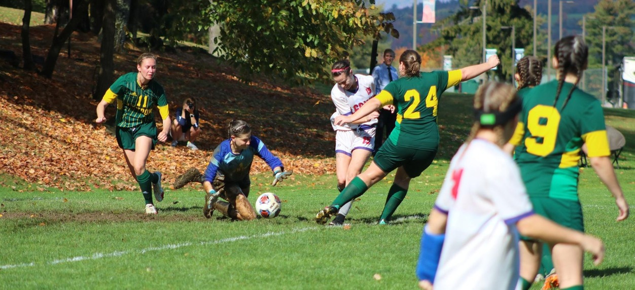 Hornet women go down to New England College