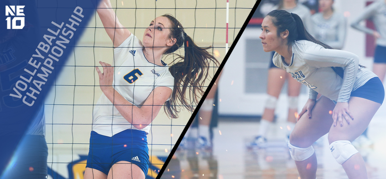 Embrace The Championship: A Perennial (New Haven) and a First-Timer (Southern Connecticut) to Square Off in NE10 Volleyball Championship Final