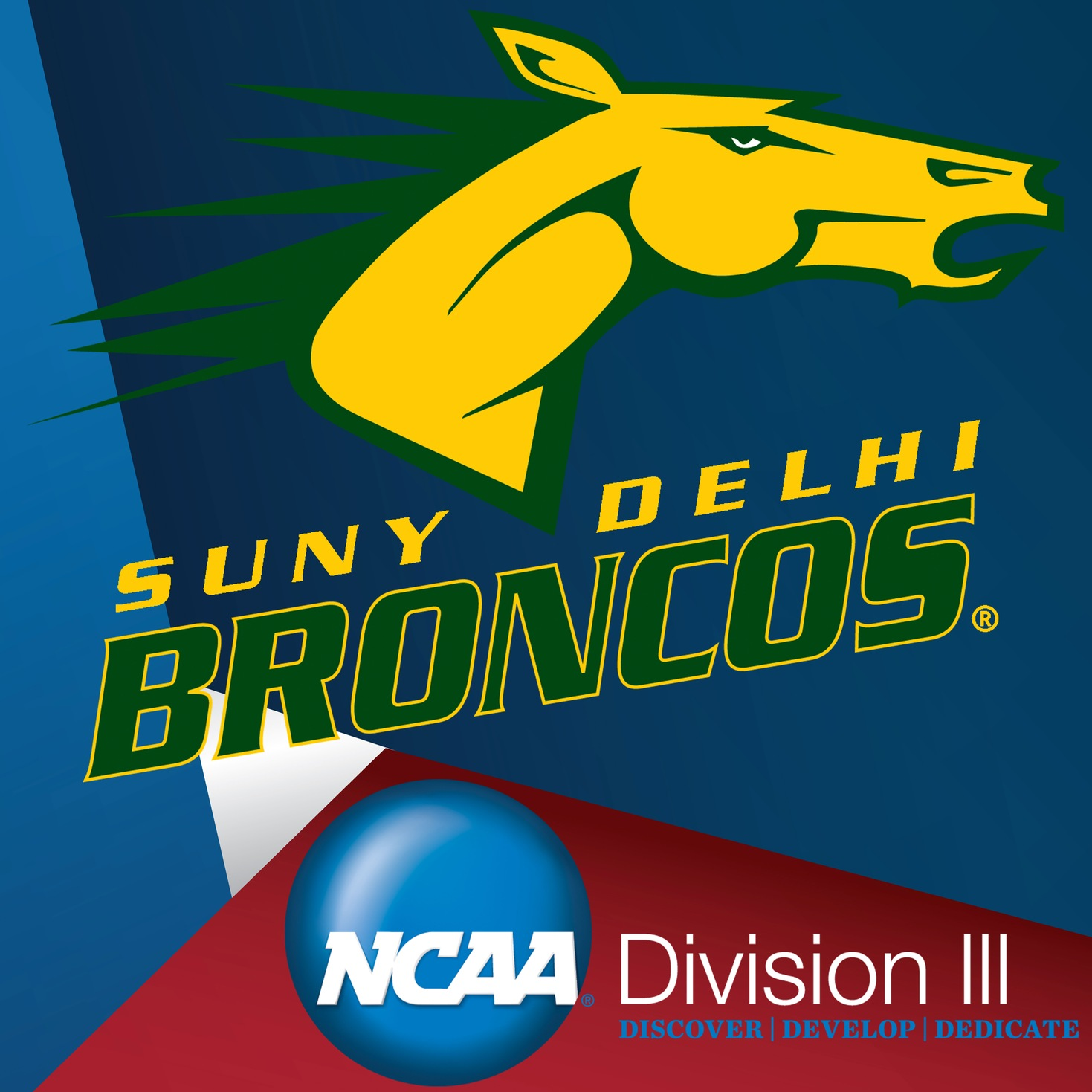 SUNY Delhi and the Move to NCAA Division III