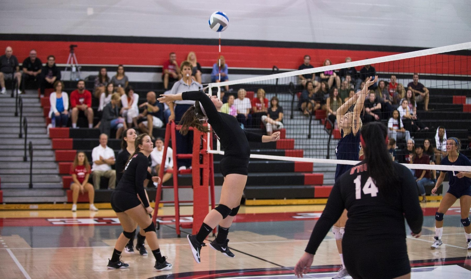 Women's Volleyball Inches Closer to Playoffs with Victory over Hilbert