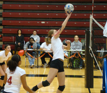 Puschak Named to 2010 CoSIDA/ESPN Academic All District Volleyball Team