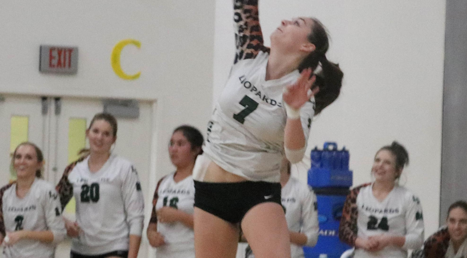 Volleyball sweeps Leopard Invitational