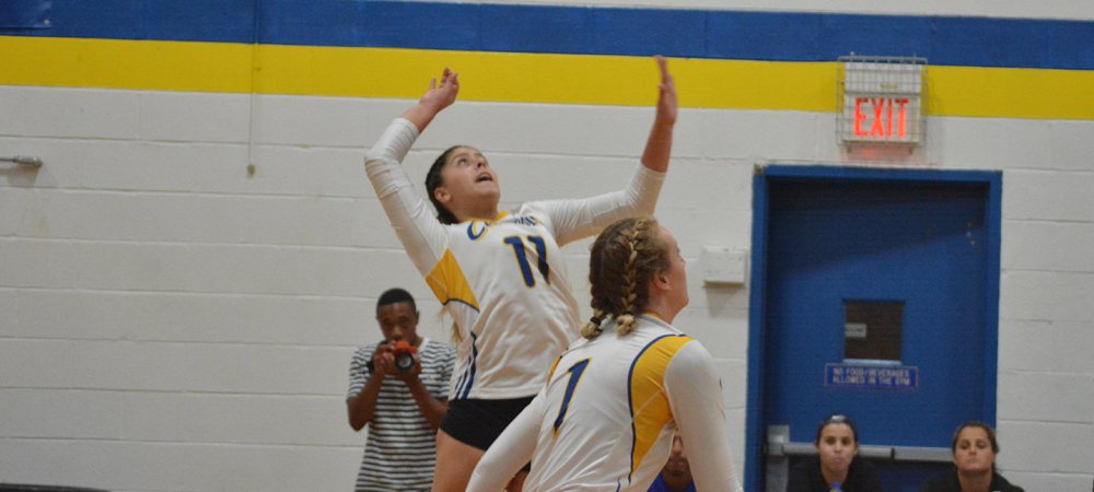 Volleyball Edged At Holy Family, 3-0