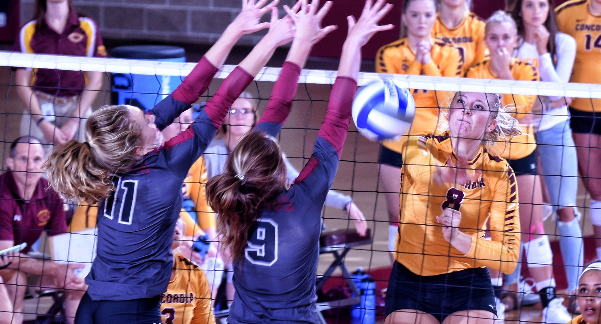 Brianna Carney had a team-high nine blocks at the Wis.-Eau Claire tournament.
