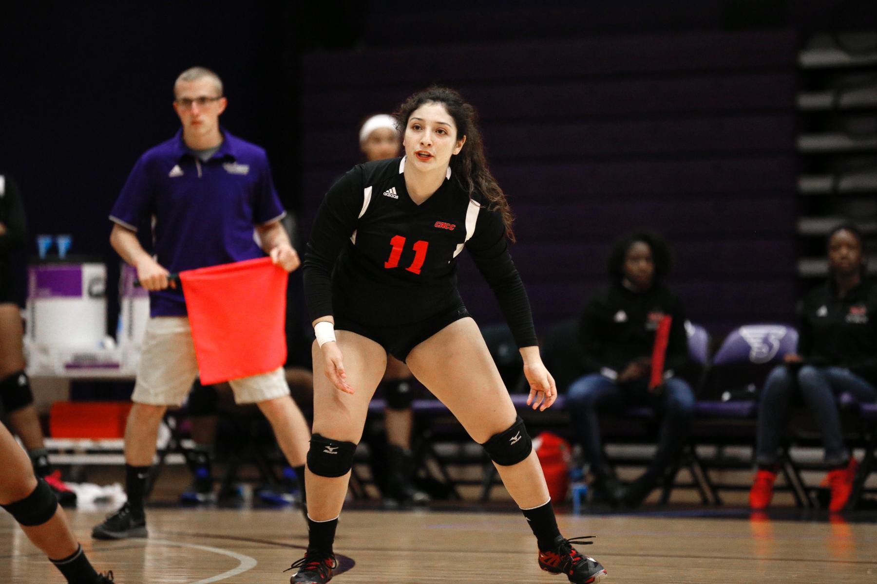 WOMEN'S VOLLEYBALL OPEN 2017 WITH LOSS TO OWLS