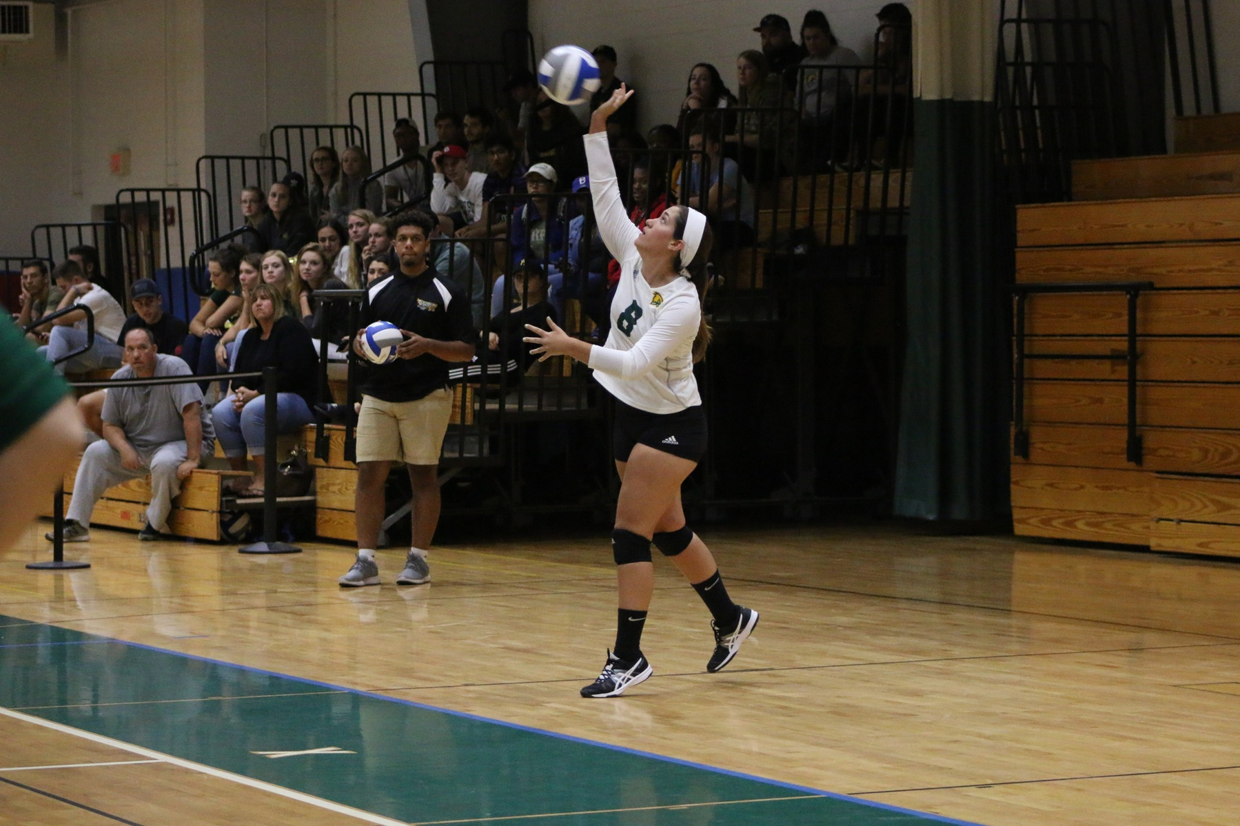 Falcons Fall to Lesley in Five Sets