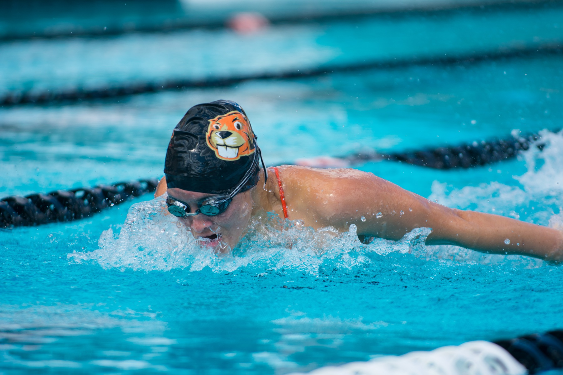 Women's Swim & Dive Wins Third Dual Meet for First Time Ever
