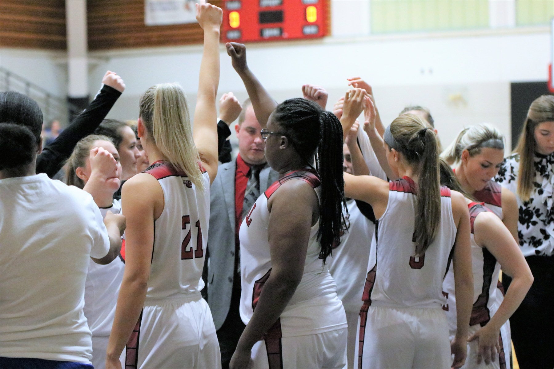 Lady Mustangs cage Owls