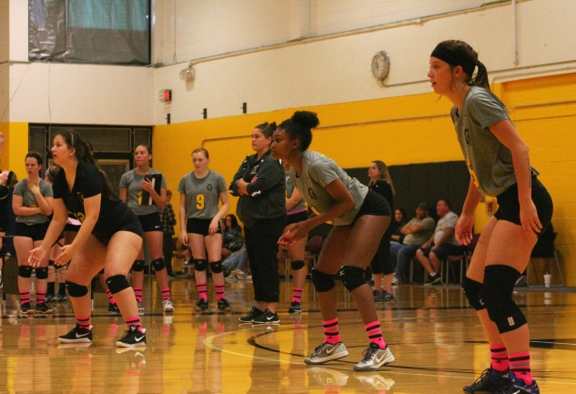 Tribunes sweep at home pod tourney