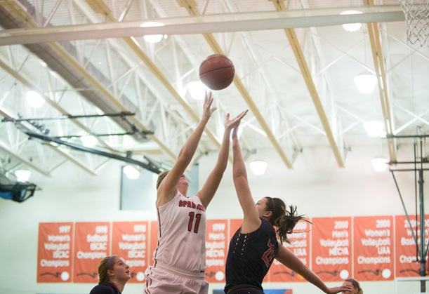 D'Youville Women Lose at Home to Panthers