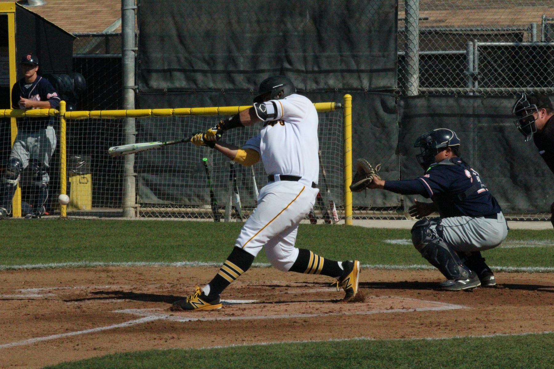 Taft College Catcher/DH Richard Ortiz