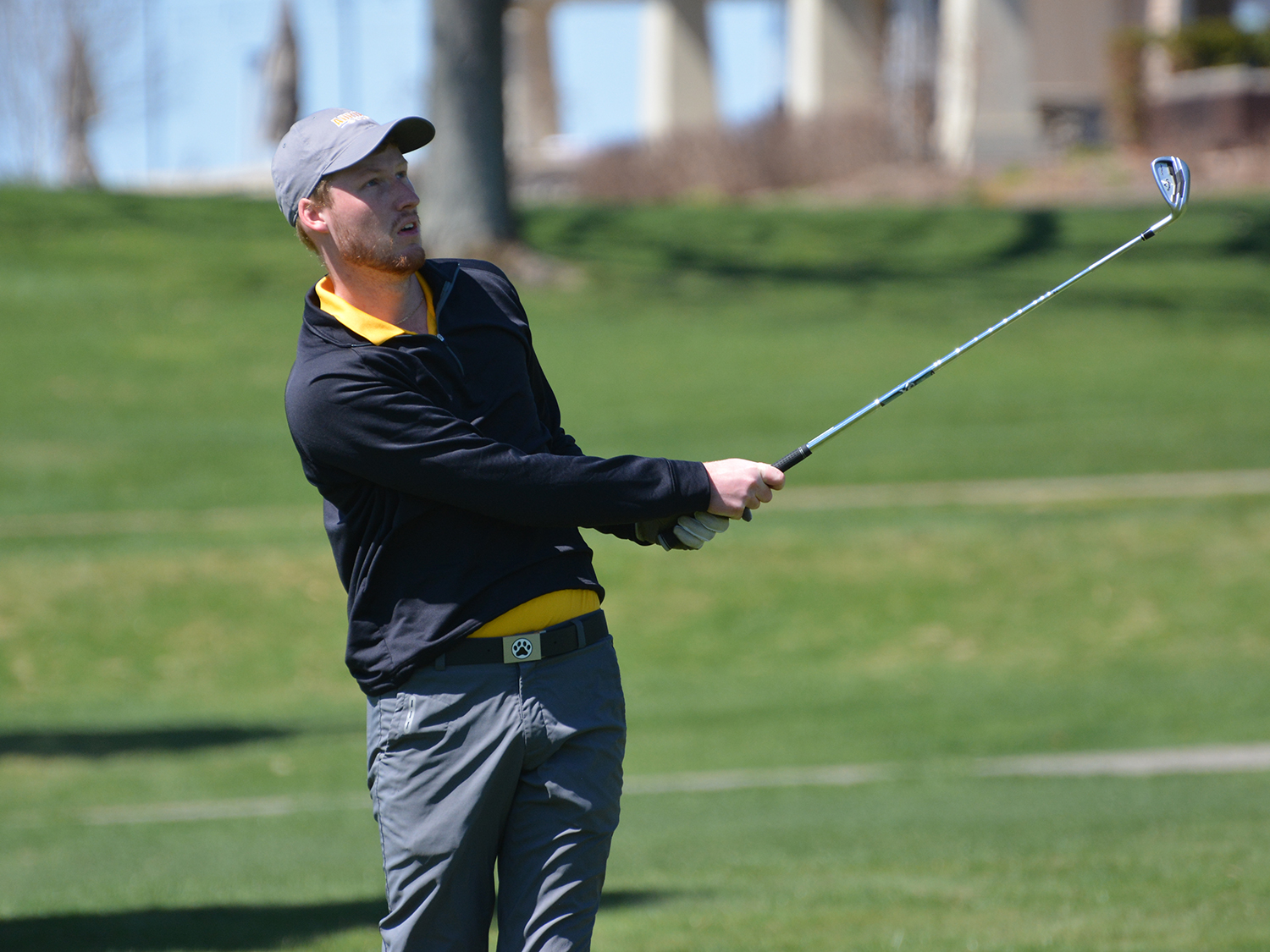 Adrian freshman Brett McGugan watches his approach shot during opening-round play at the MIAA Automatic Qualifying Tournament. (Action photo by Sheila Blackman, MIAA)