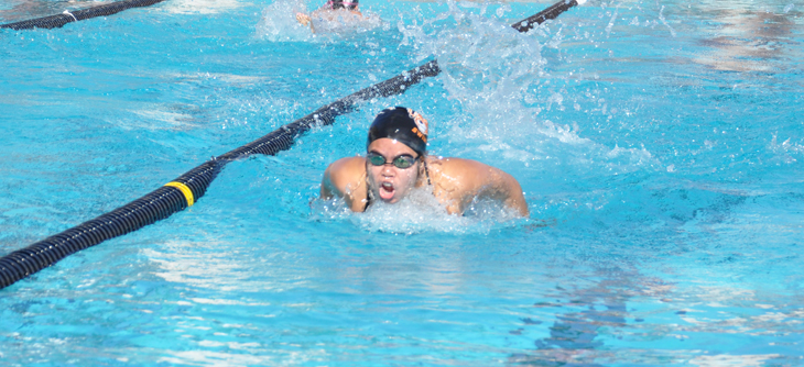 Beaver Swimmers Head to UNLV