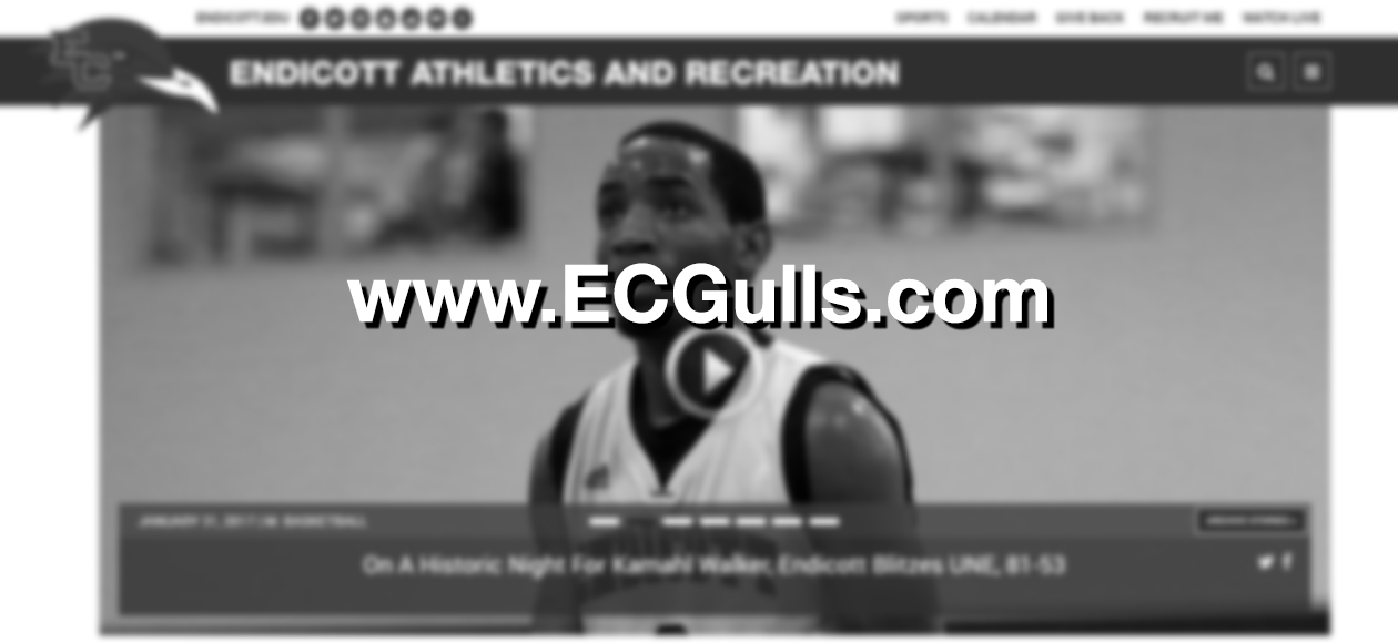 Welcome to the New ECGulls.com!