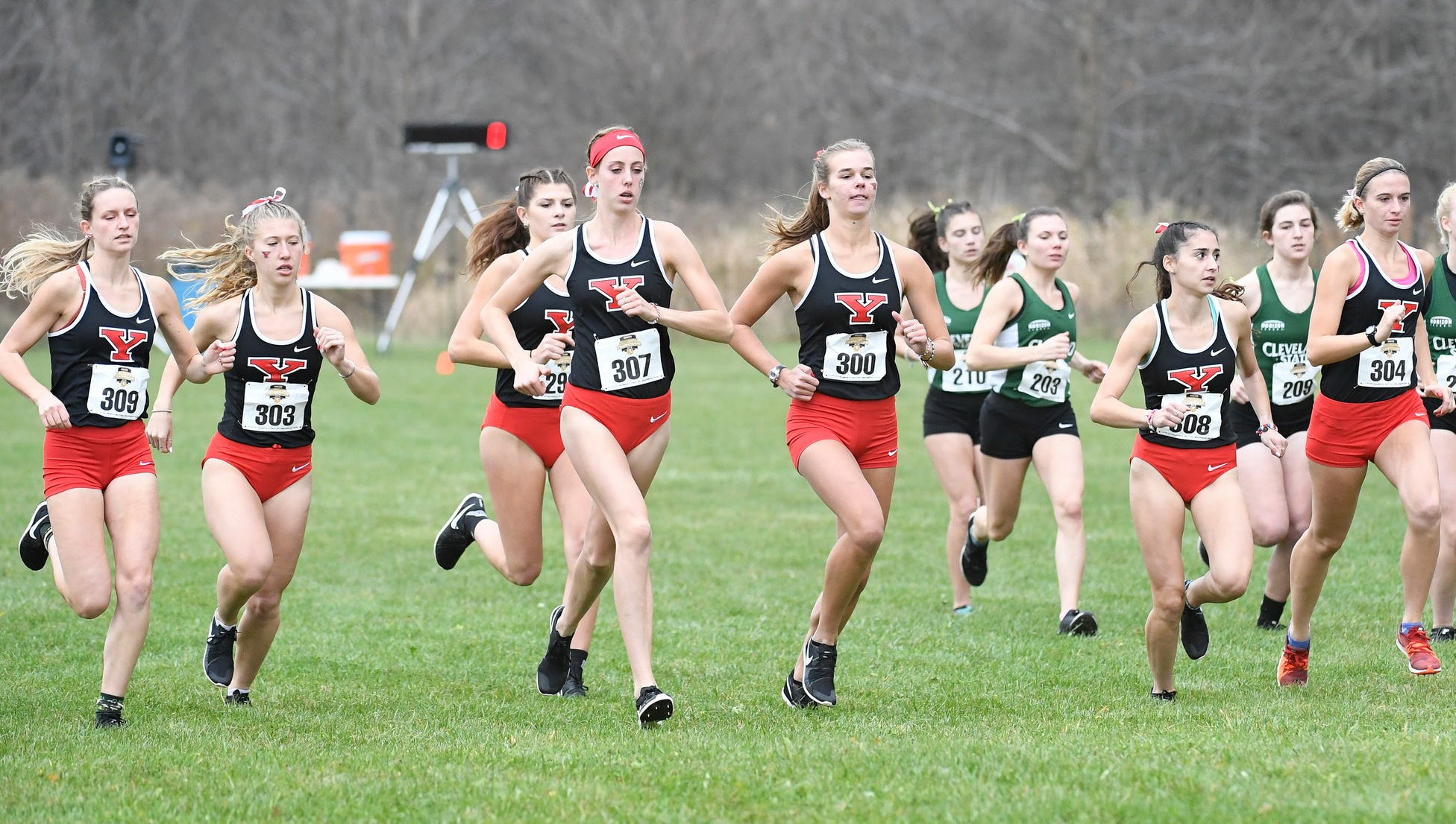 Cross Country Teams Earn All-Academic Honors From USTFCCCA