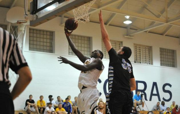 Solid Effort Nets Cobras 83-64 Win Over Pfeiffer