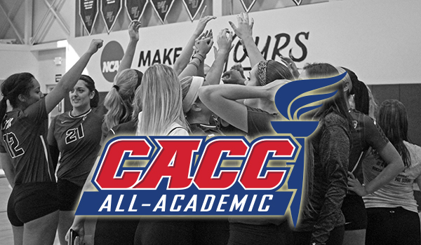 Three Wildcats Honored on 2016 CACC Volleyball All-Academic Team