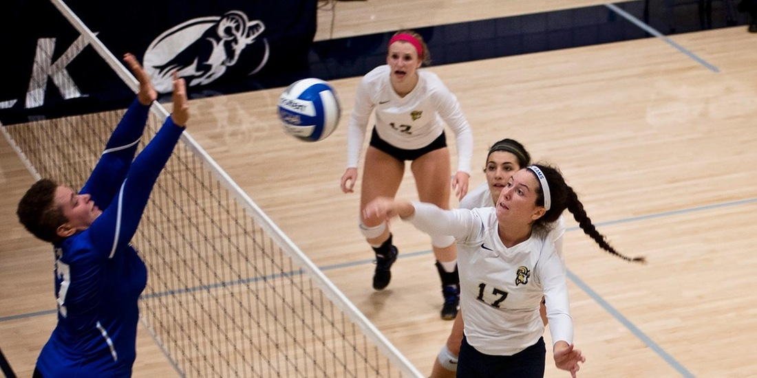Volleyball Welcomes Mt. Ida, Fitchburg State for Tri Saturday
