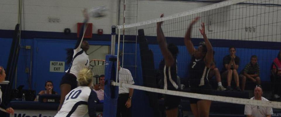 Volleyball Falls to Marymount