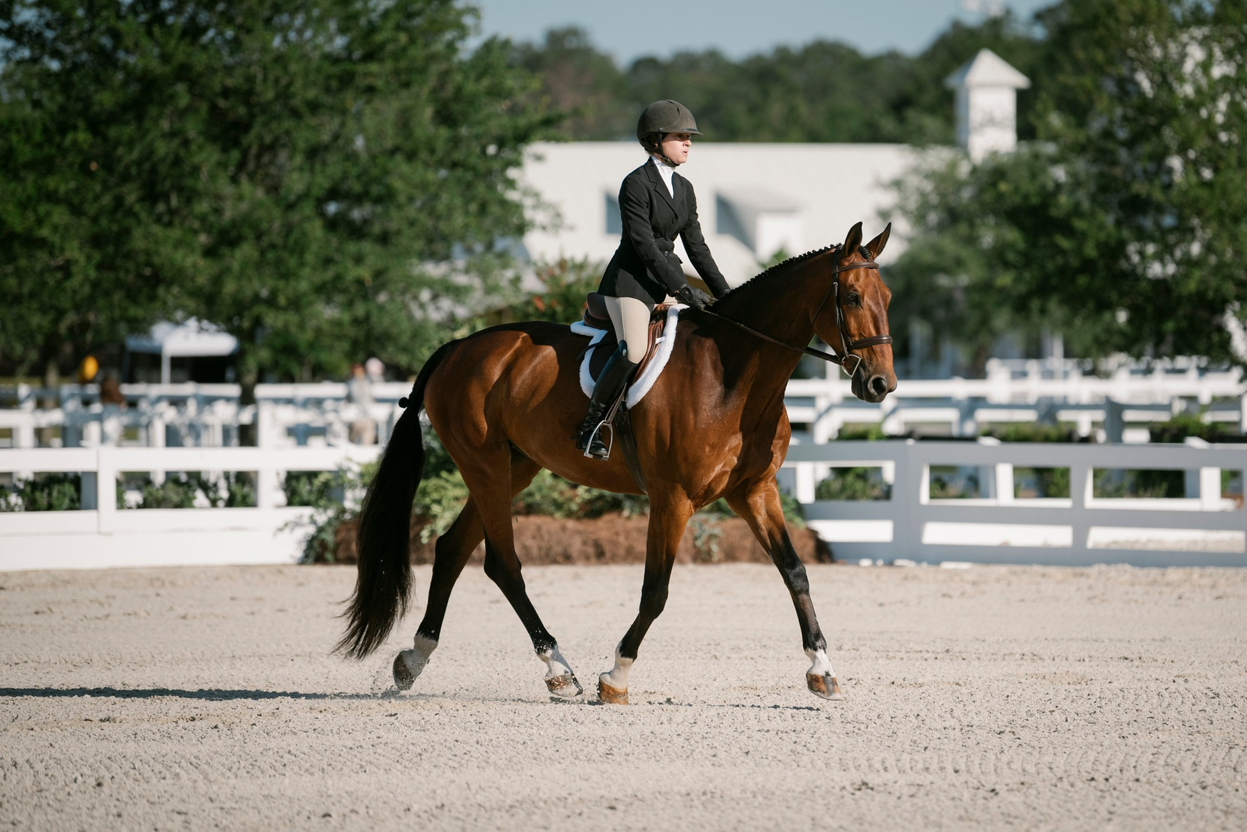 Dani Herzberg rides her horse in the Novice Flat competition.
