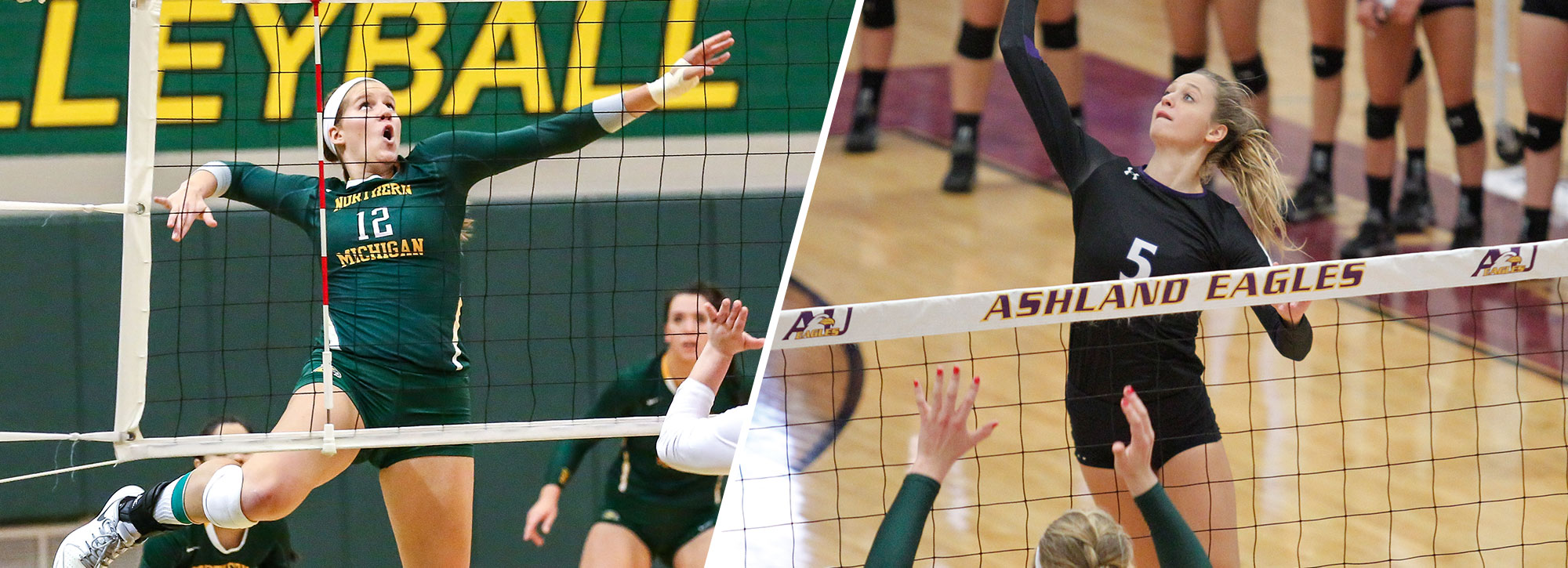 GLIAC Volleyball Players of the Week - Week 1
