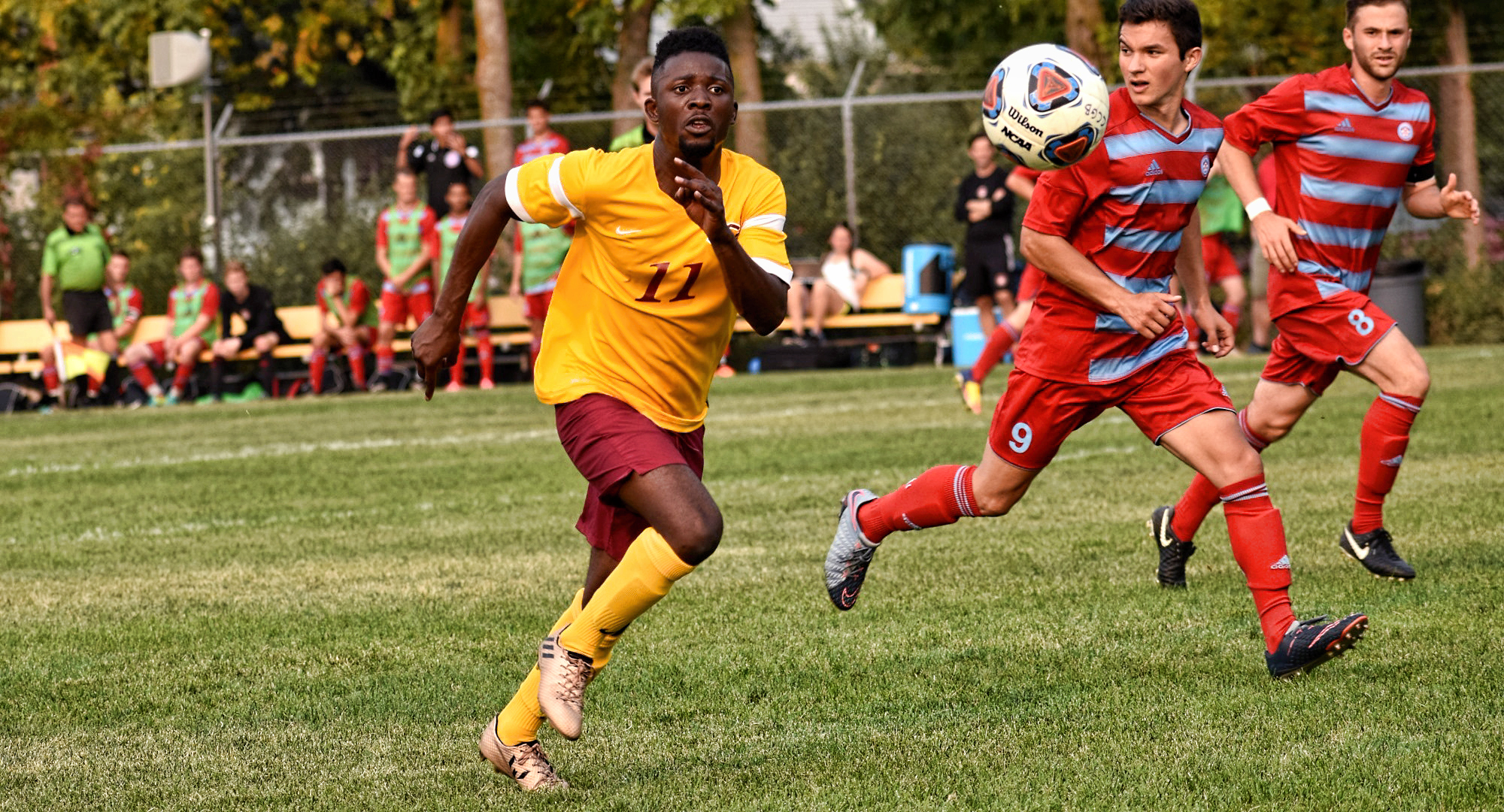 Concordia senior Roland Oyou scored the Cobbers' lone goal in their game at Gustavus. (Photo courtesy of Maddy Reed)