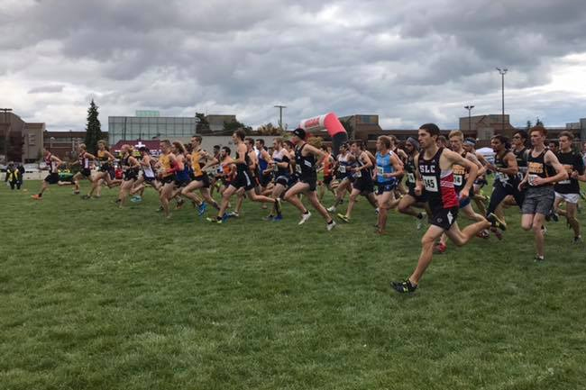 GRIZZLIES CROSS COUNTRY WITH GOOD SHOWING AT PROVINCIALS