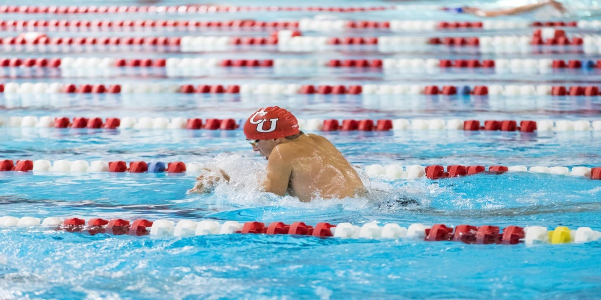 Despite Good Effort Swimming and Diving Teams Fall Short at WPI