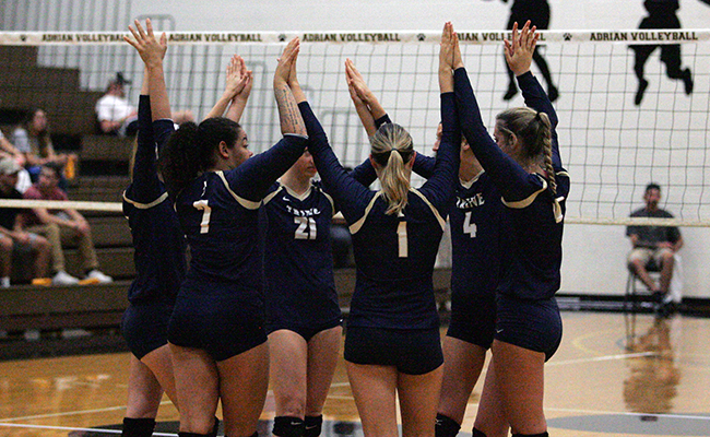 Volleyball's Comeback Comes up Short