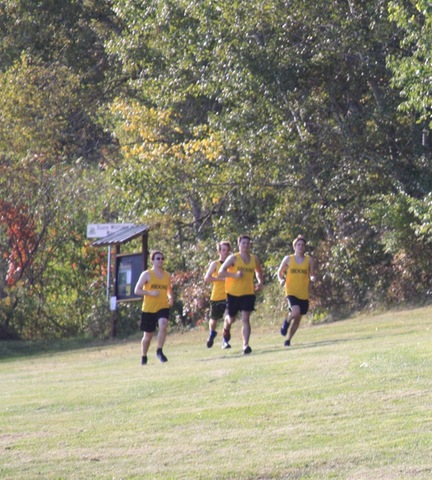 Men's cross country team running along treeline