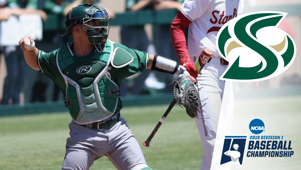 Hornets Fall to 11th-seed Stanford in NCAA Regional Opener