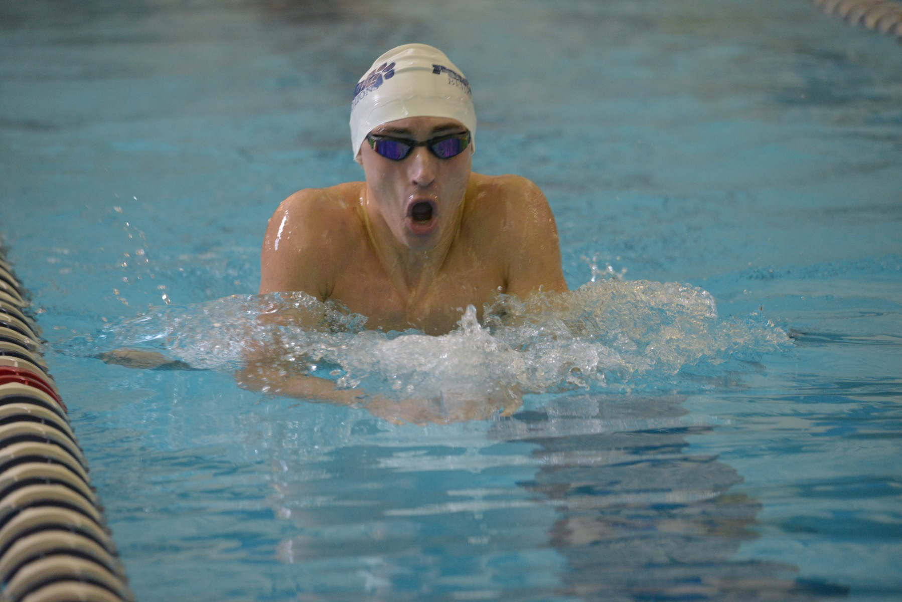 Men's Swimming and Diving Falls to Westminster