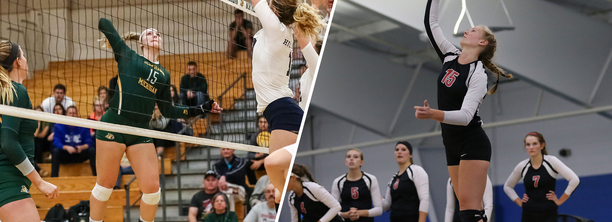 Northern Michigan's Whitehead, Davenport's Dill Earn GLIAC Volleyball Honors