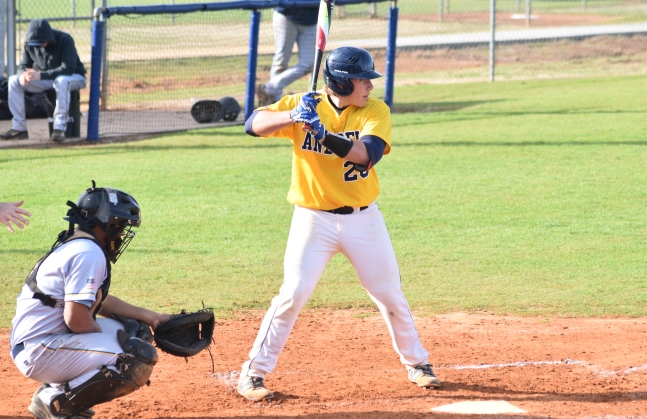 Fackler, Cash Power Tigers to Win Over Motlow State 4-3