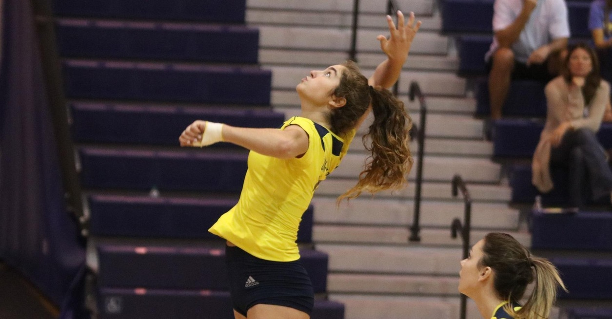 Wolverines Fall in Three Sets in Fort Wayne