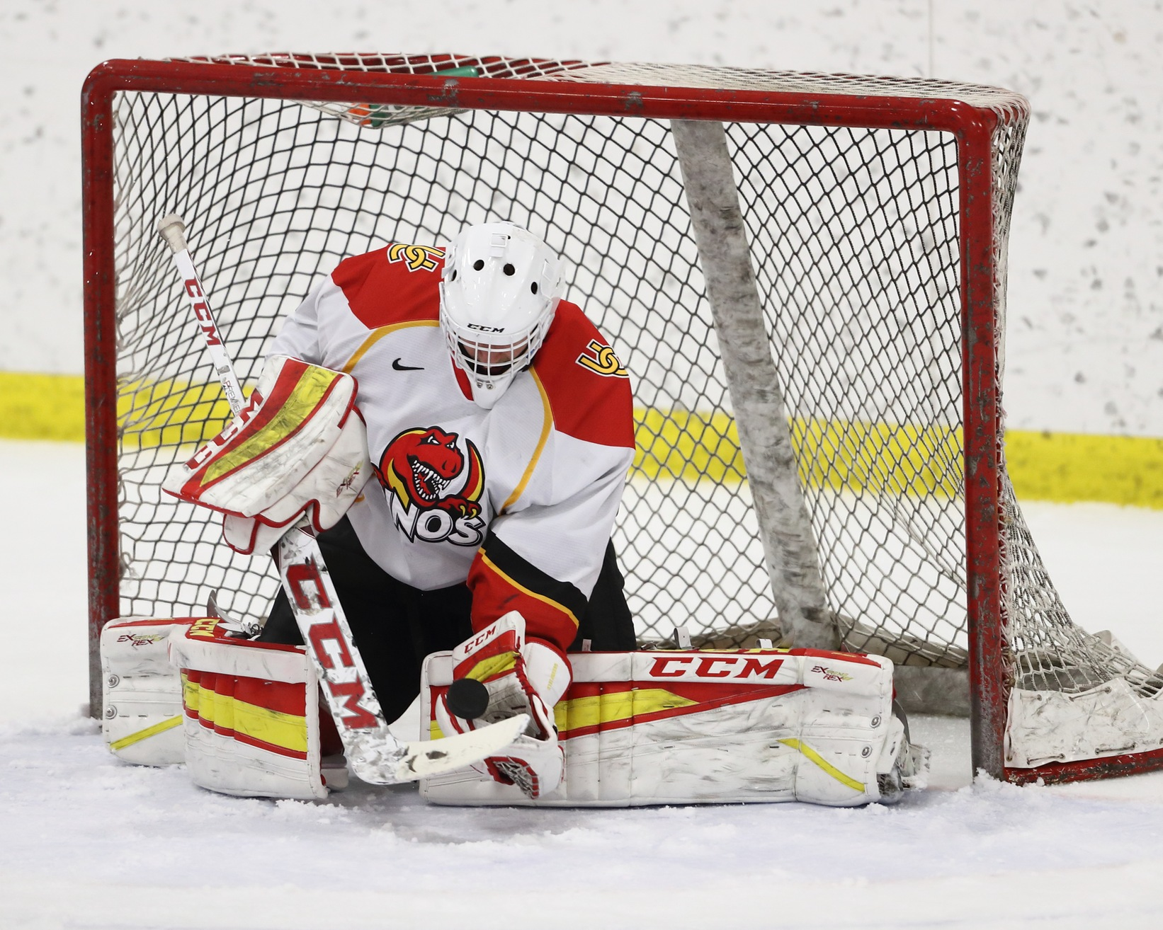The Sunshine State is not necessarily a hotbed for hockey in North America, but it is where rookie goalie Matthew Greenfield of the Calgary Dinos calls home.