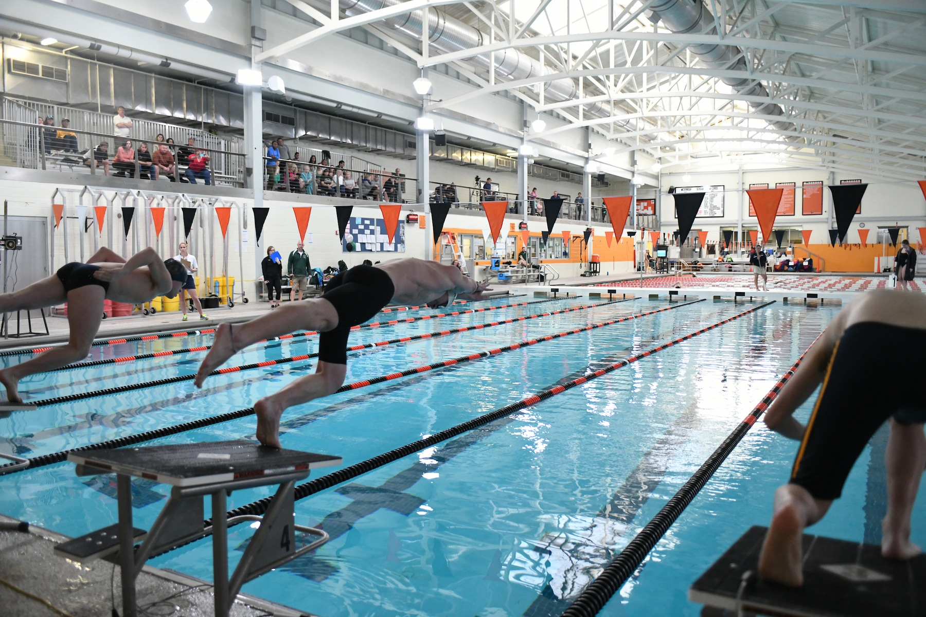 Michalak Leads Men's Swimming in Loss to Lycoming