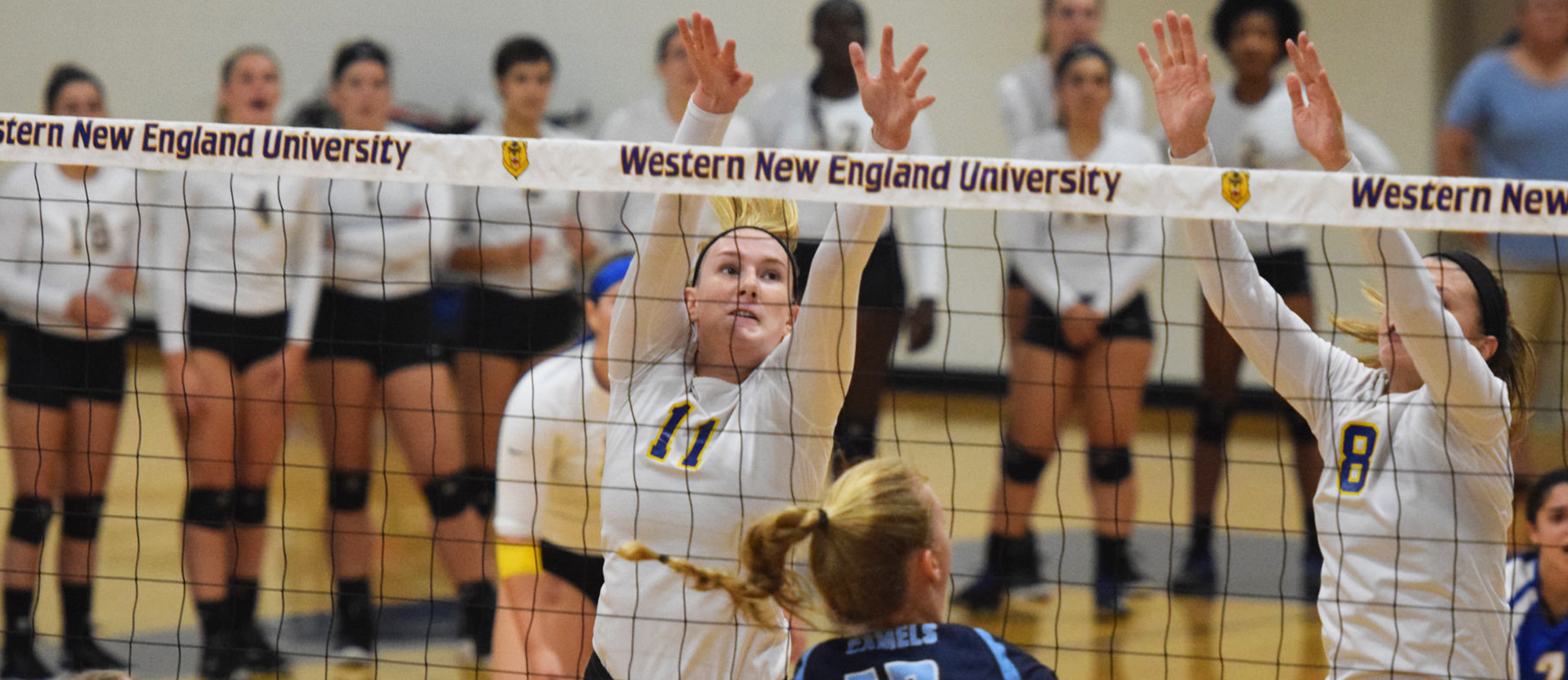 Junior Cassie Holmes recorded six kills and three blocks in Western New England's 3-0 loss to Keene State on Thursday. (Photo by Rachael Margossian)