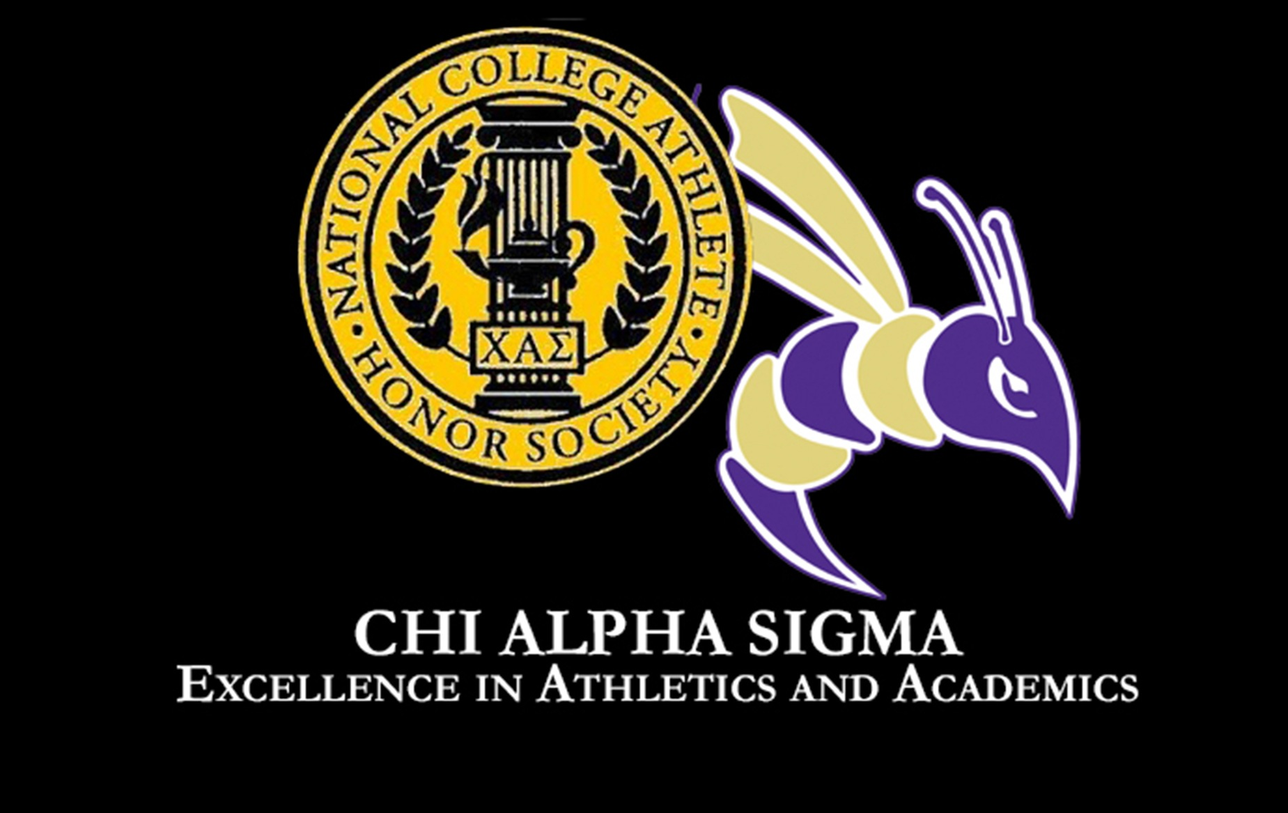Defiance Has 48 Student-Athletes Selected Chi Alpha Sigma