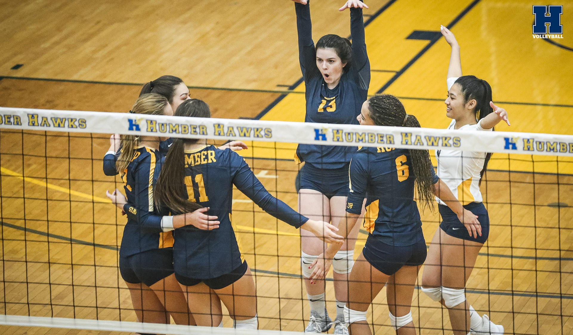 Another Sweep for No. 15 Women's Volleyball Over Boréal