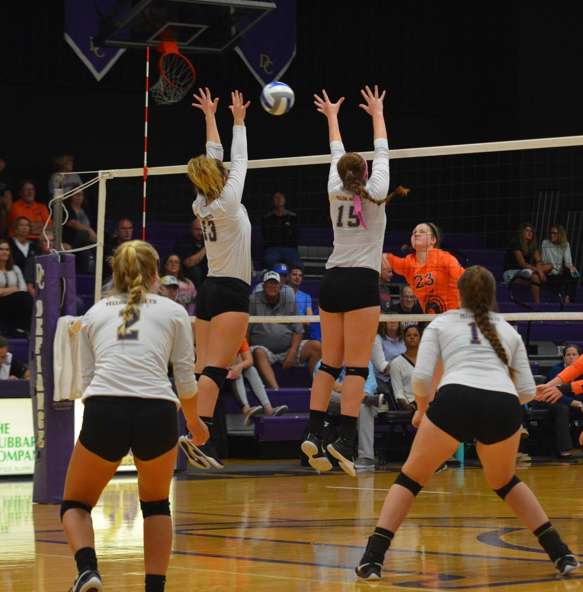 Volleyball Edged by Grizzlies in HCAC Play